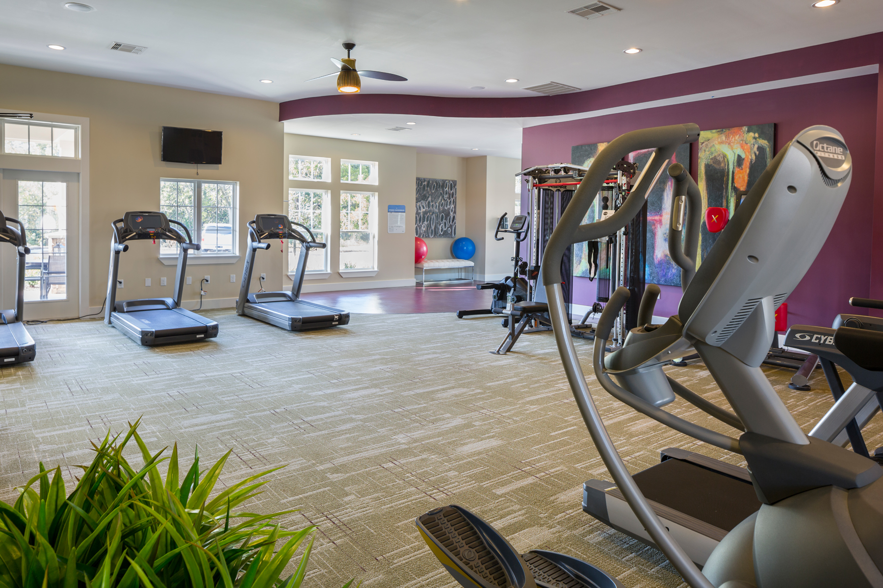 Workout room with treadmills and weight machines